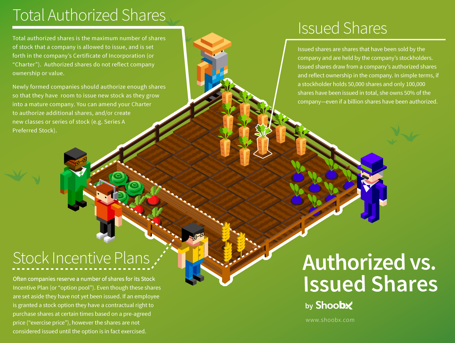 shoobx-authorized-issued-infographic